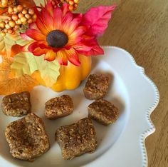 Pumpkin Oat Bars! tiu_beachgirl made the Blueberry Oat Breakfast Bars from the 8 Week BIKINI PROGRAM, but substituted the blueberries for pumpkin purée & used almond butter instead of almonds for a more creamy taste!