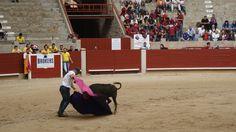 Xuntanza de peñas taurinas de Pontevedra 2014 Soccer, Wrestling, Sports, Art, Lucha Libre, Hs Sports, Football, European Football, Sport