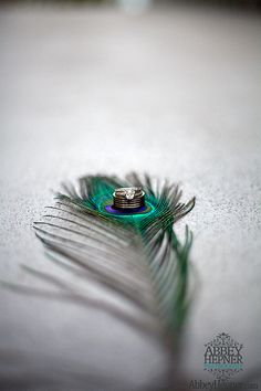 Peacock Feather Theme Wedding Rings | Flickr - Photo Sharing!