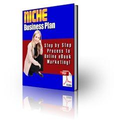 Niche Business Plan (PLR)