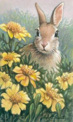 Bunny Rabbit in the flowers - Art by Lynn Bonnette: June 2010 Easter Paintings, Animal Paintings, Animal Drawings, Bunny Art, Cute Bunny, Bunny Painting, Rabbit Art, Honey Bunny, Easter Art