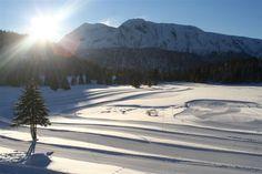 CHAMROUSSE - Plateau de l'Arselle : domaine nordique aux allures de petit Canada