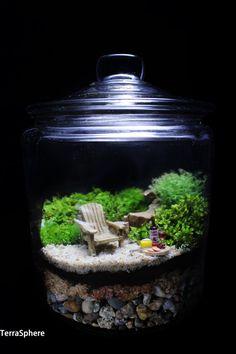 Bonsai Terrarium For Landscaping Miniature Inside The Jars 98 - DecOMG Gold Terrarium, Terrarium Scene, Garden Terrarium, Succulent Terrarium, Terrarium Ideas, Seashore Decor, Miniature Plants, Miniature Gardens, Mini Gardens