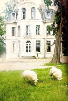 In the midst of the forests of Normandy, France, Lillian Williams and her husband Ted found the chateau de Morsan. The chateau was built ca.1765 as a summerhouse, and at one point, it served as a hunting lodge. The exterior facade of the house reflected a French Rococo architectural style.