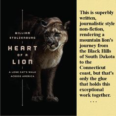My review. See: http://www.calans-eden.com/heart-of-a-lion-review