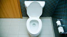 Toilet Bowl Love..Love That Makes You Feel Like Crap! | Pinterest ...