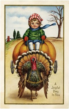 7 Funny Thanksgiving Pictures Free! - The Graphics Fairy