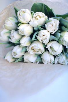 Swoon-worthy tulips