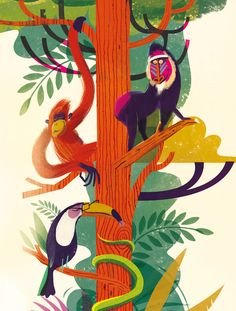 Jungle Illustration on Behance - Contemporary Illustrators - Animals Pictures Art And Illustration, Behance Illustration, Elephant Illustration, Illustration For Children, Atelier Theme, Jungle Art, Jungle Drawing, Jungle Animals, Monkey Art