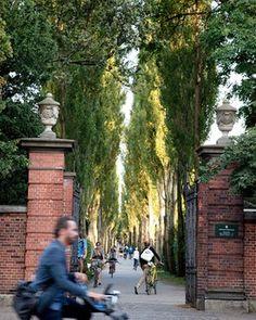 Cyklister - Assistens Kirkegård VisitDenmark