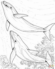 173 Best Coloring Page Kids Images In 2020 Coloring Pages