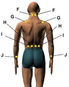 acupressure for narcolepsy. a woman on this blog said that this worked for her: http://www.nisfornarcolepsy.com/2010/01/alternative-and-natural-treatments-for.html