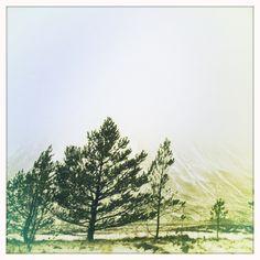Highlands copyright emma burgon