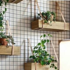 DIY Inspiration - Wood crates on the Wall with straps for herbs in the Kitchen diy garden design Główna Osobowa Bar and Restaurant in Gdyna, Poland by PB/STUDIO and Filip Kozarsk Restaurant Bar, Restaurant Design, Restaurant Interiors, Industrial Restaurant, Vintage Restaurant, Diy Inspiration, Interior Inspiration, Kitchen Inspiration, Interior Ideas
