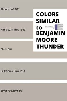 Check out some fantastic gray paint colors that are similar to Benjamin Moore Thunder. Neutral Gray Paint, Best Gray Paint Color, Greige Paint Colors, Popular Paint Colors, Exterior Paint Colors, Grey Paint, Paint Colours, Color Paints, Exterior Design