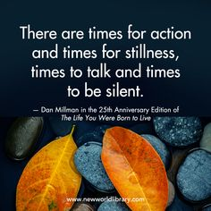 """""""There are times for action and times for stillness, times to talk and times to be silent."""" ~ Dan Millman in the 25th Anniversary Edition of THE LIFE YOU WERE BORN TO LIVE, available now from New World Library."""