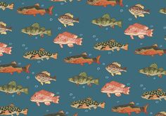 Patterns - Fish - Topher MacDonald