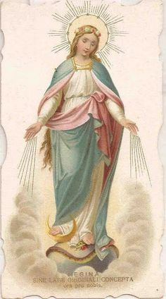 Especial - 8 de Dezembro - Festa da Imaculada Conceição