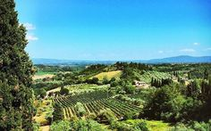Nothing is better than this view,San Gimignano, Italy!  Join us for a 2016 Italy Tour, www,www.vivatuscanytours.com