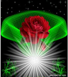Have a nice day! Beautiful Love Pictures, Beautiful Gif, Beautiful Roses, Jesus Pictures, Gif Pictures, Lovely Good Morning Images, Beau Gif, Motion Images, Montage Photo