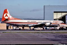 Ansett Air Freight Lockheed L-188A Electra aircraft picture (1976)