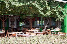 Cap Ferret Chez Hortense best authentic fish restaurant at the sea
