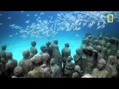 Cancun Coral Reef - Underwater Art