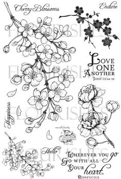 lower right hand flower! Tatto Floral, Copic, Flor Tattoo, Floral Drawing, Blossom Tattoo, Japanese Flowers, Tattoo Sketches, Botanical Illustration, Flourish