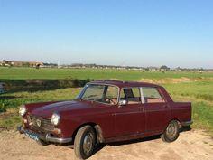 Peugeot 404 1.6 1967 Rood