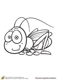 Coloriage insecte et petite bestiole, une sauterelle - Hugolescargot.com