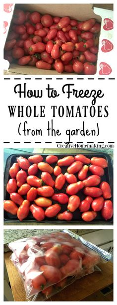 Learn the easy way to freeze extra tomatoes from the garden. Learn the easy way to freeze extra tomatoes from the garden. Freezing Tomatoes, Freezing Fruit, Freezing Vegetables, Fruits And Veggies, How To Freeze Tomatoes, Storing Tomatoes, Grow Tomatoes, Fresh Vegetables, Freezer Cooking