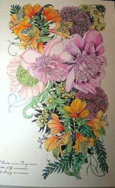 Floribunda Coloring book - Colored by me