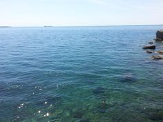 Castle Miramare, Trieste, Italy, another sea view. Trieste, Castle, Waves, Italy, Sea, Adventure, Pictures, Outdoor, Photos