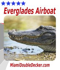 Miami Double Decker offers an exciting Airboat Tour and Wildlife Show.  Take a picture with an Alligator, see Florida Wildlife, ride on an Airboat, check out all of the birds, fish and other wildlife
