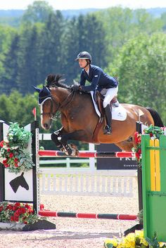 This is what i strive to look like in my over fences... perfection