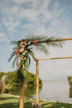 Tropical Destination Florida Outdoor Wedding Decor, Bamboo Wedding Arch, Blush P. - Tropical Destination Florida Outdoor Wedding Decor, Bamboo Wedding Arch, Blush Pink and White Flowe - Bamboo Wedding Arch, Palm Wedding, Floral Wedding, Wedding Aisles, Wedding Backdrops, Wedding Ceremonies, Ceremony Backdrop, Boho Wedding, Wedding Design Inspiration