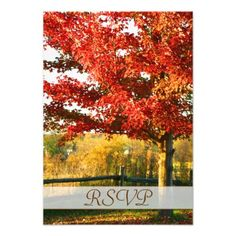 This DealsFall Colors Country RSVP Card Announcementslowest price for you. In addition you can compare price with another store and read helpful reviews. Buy