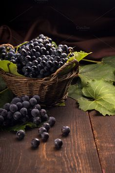 grapes in a basket by peterzsuzsa on @creativemarket