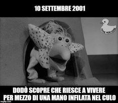 Ilruggitodelmandrillo True Memes, Funny Memes, Hilarious, Fanny Photos, Calming Cat, Laughter, Dinosaur Stuffed Animal, Nostalgia, Funny Pictures