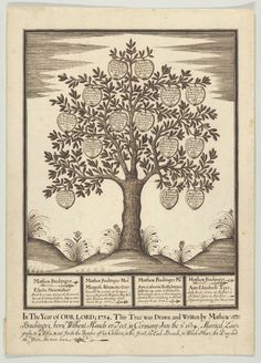 "A 1734 family tree drawn by Buchinger. Credit Collection of Ricky Jay // These micrographic drawings, from the collection of Ricky Jay, are signed with some variation of ""Matthias Buchinger, born without hands or feet."""