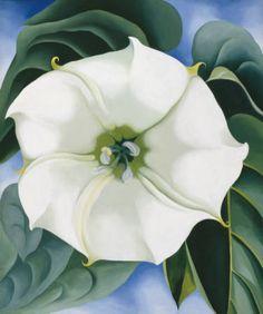 Jimson Weed, Alternative Title White Flower No. 1 (1932), Georgia O'Keeffe.