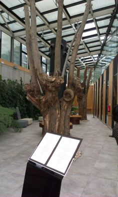 Restaurante Azurmendi, Larrabetzu, Spain - #26 restaurant in the world, 3 estrellas Michelin