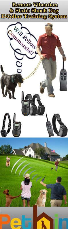 Want to gain your dog's focus by using technology like someone tapping on your shoulder to get your attention? Try Pethin's E-Collar, If used correctly the dog will become voice reliant instead of collar/leash reliant. The collar should always be started on 0 level while a command is given and then increased if the dog doesn't respond and then turned back to 0 when the dog does the correct thing. Try It Out Today - 6 Months Money Back Guarantee!  http://www.chefcoo.com/collections/pethinbrand