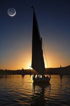 Nile Felucca at Sunset