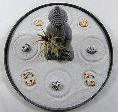 Tillandsia Ionantha & Zen Garden