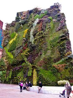 Vertical Garden at the Caixa Forum