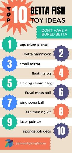 Don't have a bored betta fish - a list of some of the best toys for betta fish that can be used to play with or even train your fish. Who wouldn't want a fish that does tricks?! Keep your betta occupied with some fun games and places to for him to chill out. betta fish toys, toys for bettas, betta toys, aquarium toys, betta hammock, leaf hammock, floating log, moss balls, fish training, fish tank decorations, lazer pointers, betta mirror, betta fish tricks, betta fish tanks, betta fish… Aquarium Garden, Planted Aquarium, Aquarium Fish, Betta Fish Toys, Training Kit, Small Mirrors, Fish Tanks, How To Train Your, Fun Games