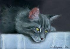 2007-15 Graue Katze Pastell Zeichnung