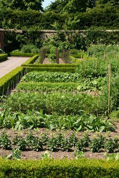 .Kitchen Garden