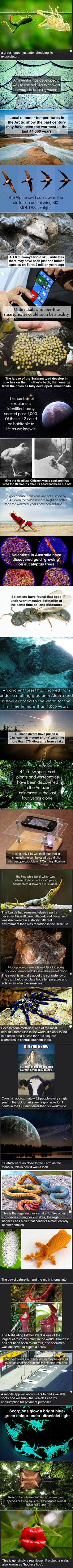 Here are some fun and fascinating science facts that might surprise you.